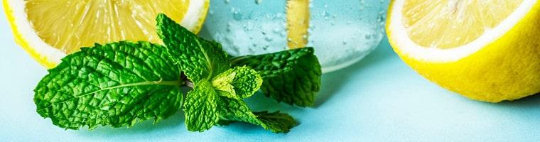 Minzblätter enthalten Menthol. Dieses ätherische Öl wirkt leicht betäubend.