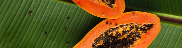 Die Papaya enthält proteolytische Enzyme und viele weitere gesunde Inhaltsstoffe.