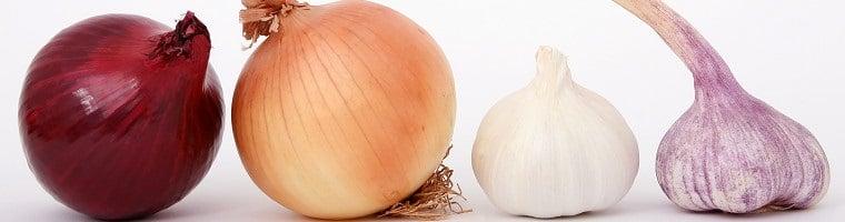 Sowohl Zwiebel, als auch Knoblauch finden als Hausmittel gegen Zahnschmerzen Verwendung.
