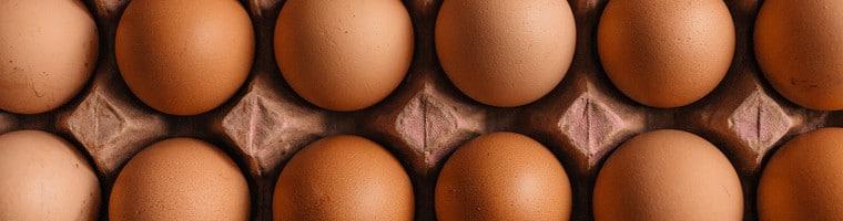 Eier sind nicht nur eine wertvolle Proteinquelle. Sie finden auch als Hausmittel Verwendung. So wird zum Beispiel das Eiklar gerne bei Hautbeschwerden angewendet.